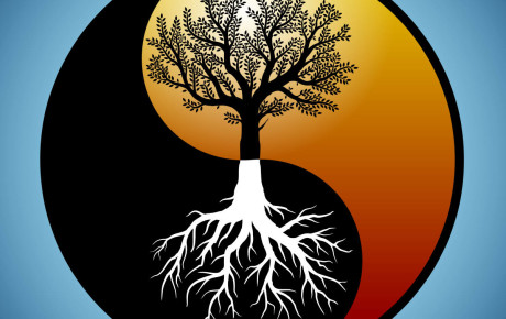 Tree and it's roots silhouette in modified yin yang symbol